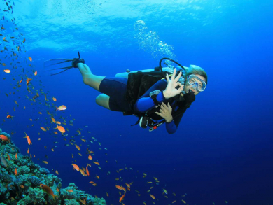 Where to go diving in Oman