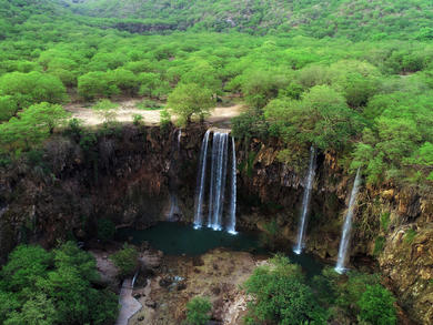 Khareef seasons begins in governorate of Dhofar